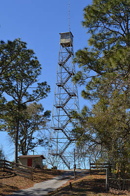 Photograph - Florida Forest Fire Watch Tower by rd Erickson
