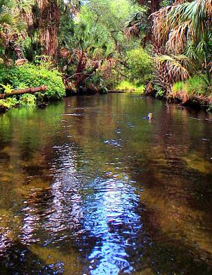 Photograph - Florida Garden Of Eden by Sheri McLeroy