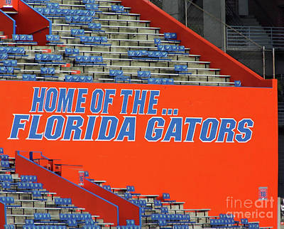 Photograph - Florida Gators by D Hackett
