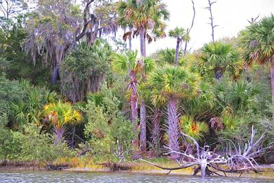 Photograph - Florida Greens by Alice Gipson