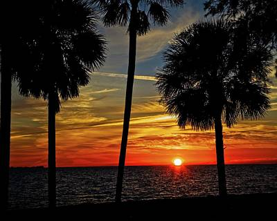 Photograph - Florida Gulf Sunset by Ronald Lutz