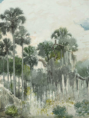 Painting - Florida Jungle by Winslow Homer