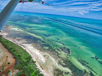 Photograph - Florida Keys by Farol Tomson