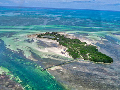 Photograph - Florida Keys - One Of The by Farol Tomson