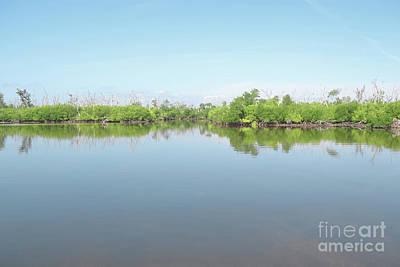 Photograph - Florida Lake Trees Sky by Andrea Hazel Ihlefeld