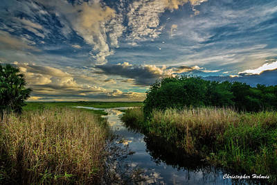 Photograph - Florida Landscape by Christopher Holmes