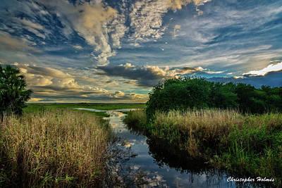 Photograph - Florida Landscape by Christopher Holmes