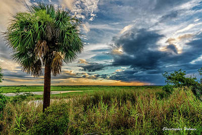 Photograph - Florida Landscape II by Christopher Holmes