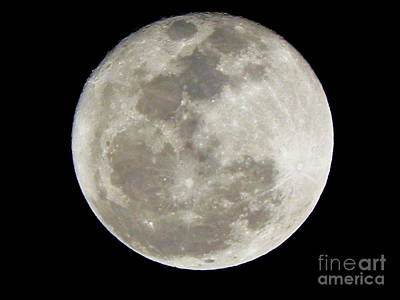 Florida Moon 2-28-2011 Art Print by Jack Norton