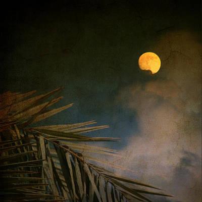 Florida Moon Art Print