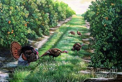Osceola Turkey Painting - Florida-orange Groves-osceola Turkeys by Daniel Butler