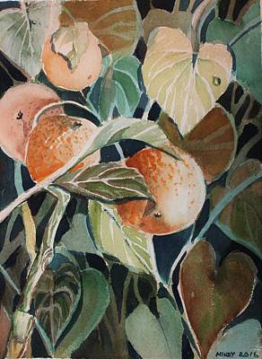 Drawing - Florida Oranges by Mindy Newman