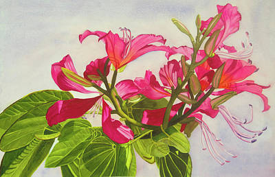 Wall Art - Painting - Florida Orchid by Terry Arroyo Mulrooney