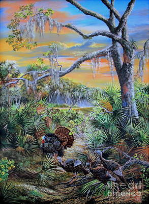 Florida Osceola Turkeys- Headed To Roost Art Print by Daniel Butler