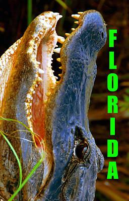 Photograph - Florida Postcard Spca Alligator by David Lee Thompson