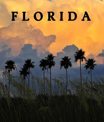 Florida Poster Art Print by David Lee Thompson