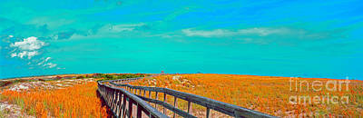 Photograph - Florida Sand Dunes Atlantic New Smyrna Beach by Tom Jelen
