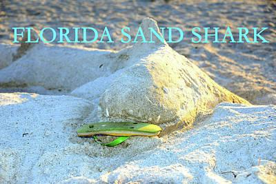 Photograph - Florida Sand Shark Pc  by David Lee Thompson