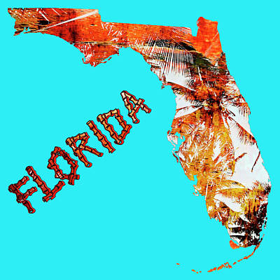 Florida Map Art Print by Skip Nall