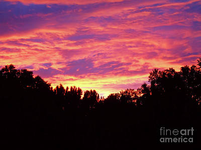 Photograph - Florida Sky On Fire by D Hackett