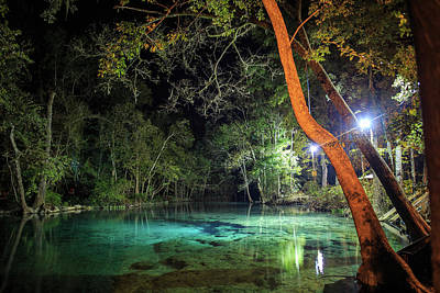 Photograph - Florida Spring At Night by Stefan Mazzola