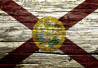 Alligator Mixed Media - Florida State Flag 3w by Brian Reaves
