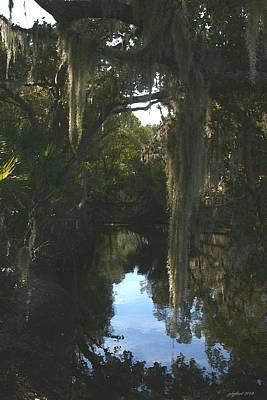 Florida Swamp Original by Joseph G Holland