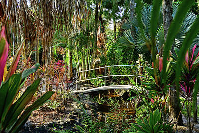 Photograph - Florida Tech Botanical Garden by Ben Prepelka