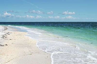 Photograph - Florida Tropical Beach  by Andrea Hazel Ihlefeld