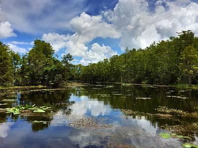 Photograph - Florida Wetlands by Juan Montalvo
