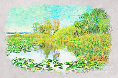 Florida State Wall Art - Photograph - Florida Wetlands by Laura D Young
