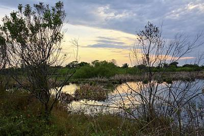 Photograph - Florida Wetlands Sunset by Carol Bradley