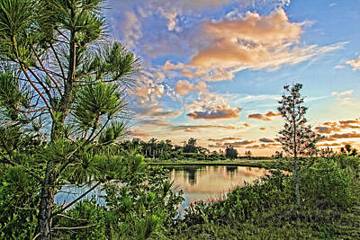 Photograph - Florida's Natural Beauty 2 by HH Photography of Florida