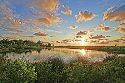Photograph - Florida's Natural Beauty by HH Photography of Florida