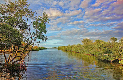 Photograph - Florida's Scenic Waterways by HH Photography of Florida