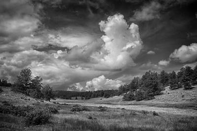 Photograph - Florissant Fossil Bed Np Colorado Bnw Img_8508 by Greg Kluempers