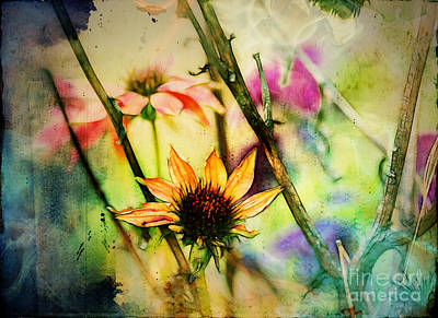 Digital Art - Florus - A2c5b3 by Variance Collections