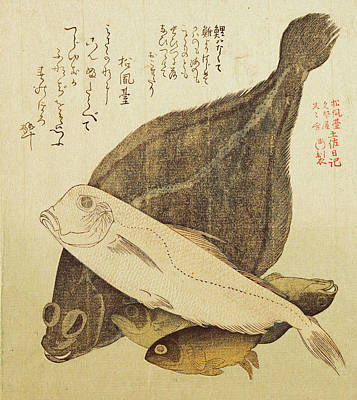 Flounder Painting - Flounder And Other Fishes by Kubo Shunman