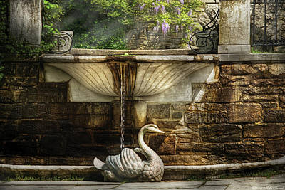 Flower - Wisteria - Fountain Art Print by Mike Savad