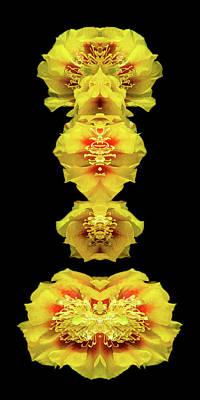 Digital Art - Flower 08-005-19 by Scott McAllister