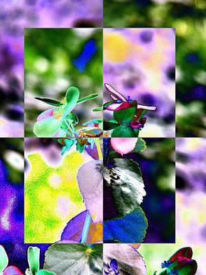Freeway Digital Art - Flower 2 by Tim Allen