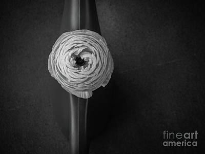 Photograph - Flower #2059 by Hans Janssen