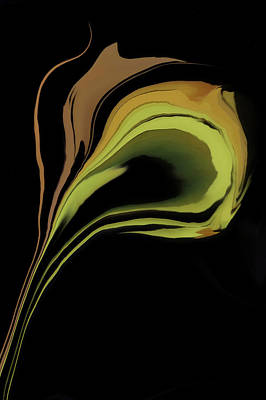 Tulips Digital Art - Flower Abstract by Art Spectrum