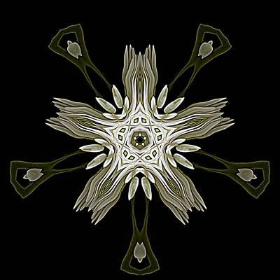 Digital Art - Flower Abstraction by Cyndy Doty