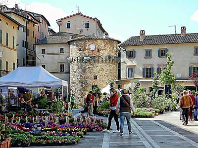 Photograph - Flower And Plant Festival Cetona by Dorothy Berry-Lound