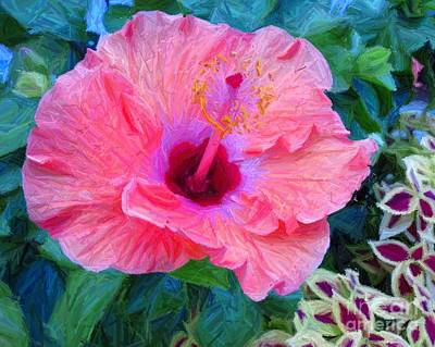 Photograph - Flower At The Cape by Donna Cavanaugh