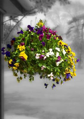 Lilac Time Photograph - Flower Basket by Svetlana Sewell