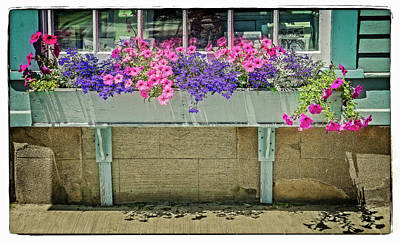 Photograph - Flower Bed by Jerry Golab