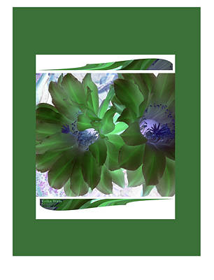 Photograph - Flower Blossom Green by Erika Wain