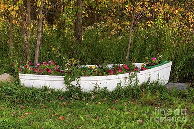 Photograph - Flower Boat by Les Palenik
